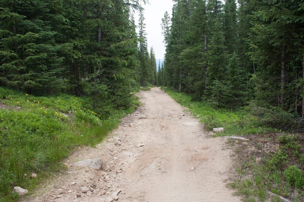 Great Divide Mountain Bike Route possible road